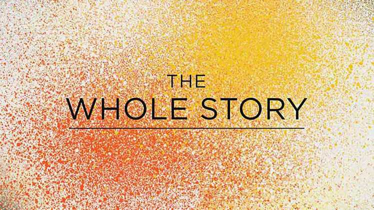 the-whole-story-series-artwork