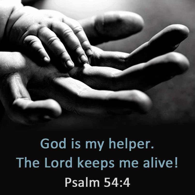 Psalms 53-56