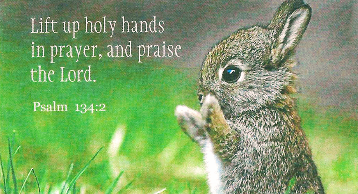 Lift up your hands in the sanctuary, and bless the Lord. - Psalm 134:2   by  Keith McGivern   Medium